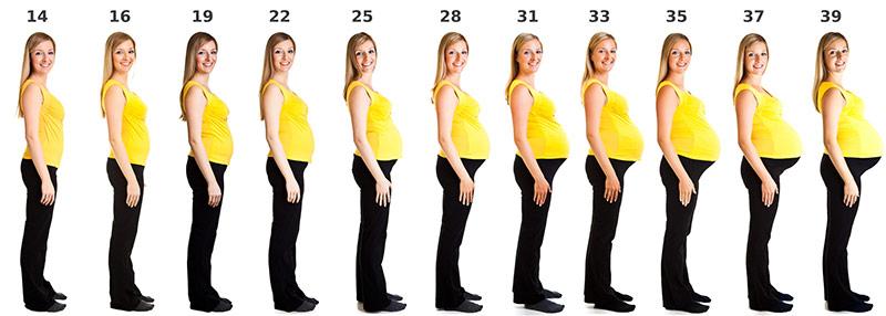 was hilft bei verstopfung in der schwangerschaft